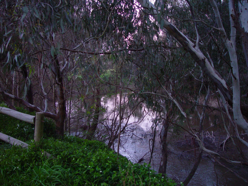 The Yarra River at Dusk, July 2011
