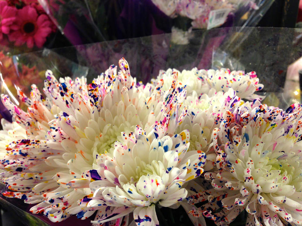 white flowers with multicolor splatter