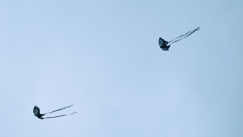 two butterfly kites in a blue sky